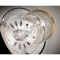 Falcon Eyes lamp GY9,5 250 W voor HL-250