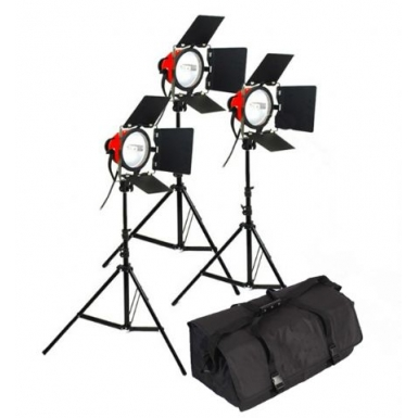 StudioKing TLR800-3 daglicht video set